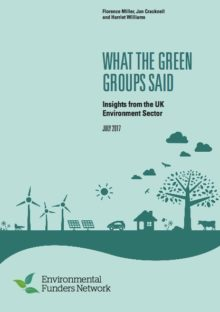What the Green Groups Said: Insights from the UK Environment Sector